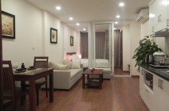 Cau Giay brand new apartment