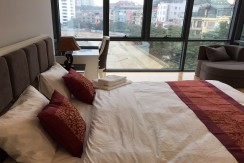 apartment in pham huy thong
