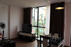 Cho thuê căn hộ tại Đào Tấn, Ba Đình