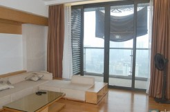 Indochina plaza apartment (7)