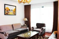 Luxurious apartment in Hai Ba Trung for rent