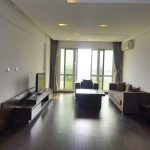 Ciputra Hanoi apartment rent in P1 building