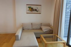 Brand new apartment for rent Indochina Plaza