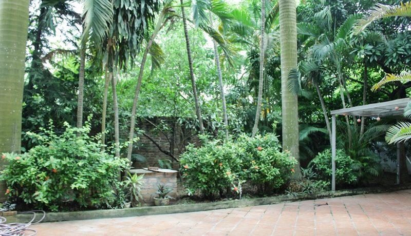 villa in tay ho  (2)