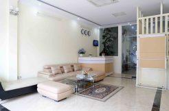 serviced apartment in trung yen