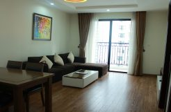 Two-bedroom apartment in Times City
