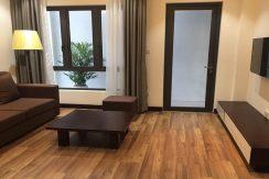 serviced apartment phan boi chau
