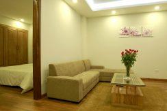 Cho thuê căn hộ dịch vụ phố Trần Duy Hưng