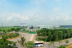Tong the_Panorama 1