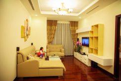 Cho thuê căn hộ cao cấp Royal City