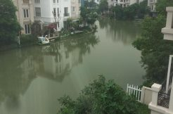 Cho thuê biệt thự Vinhomes Riverside Long Biên