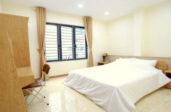 Serviced Apartments near Duy Tan