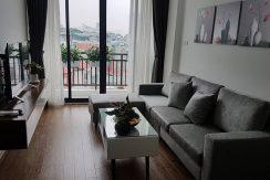 Modern warmly Ba Dinh apartment