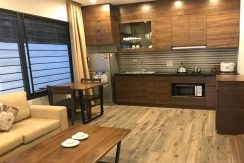 Apartments in Cau Giay (3)