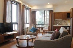 Dao Tan serviced apartments