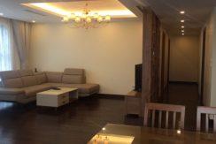 Goldmark city Apartment rental