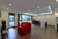 apartment dang thai mai (1)