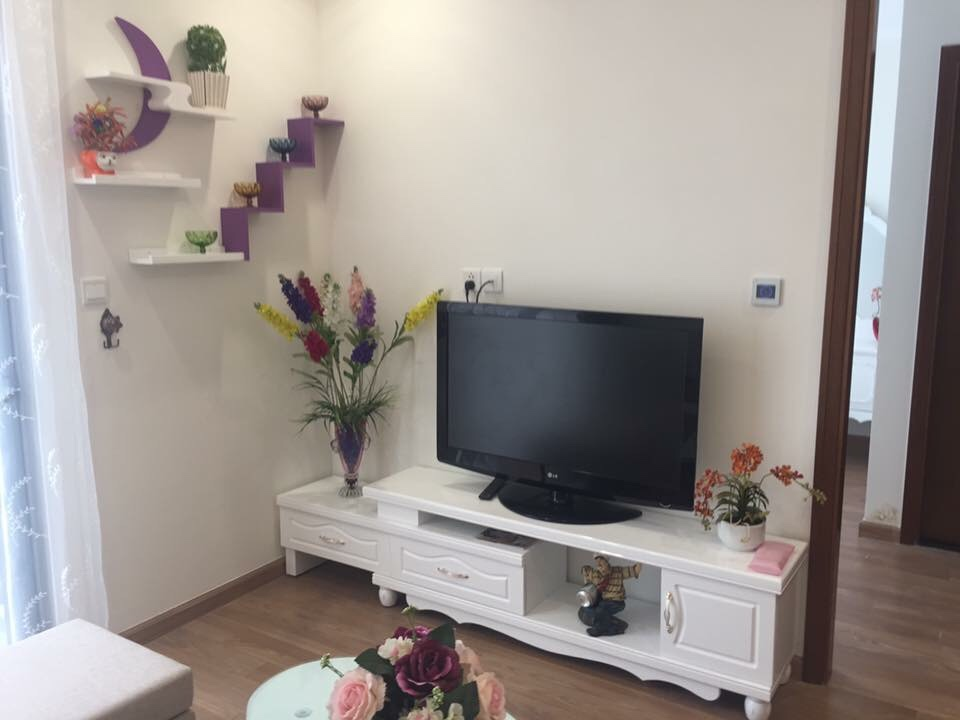 Budget 2 bedroom Times City Minh Khai apartment