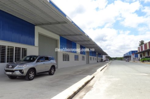 factory for rent in binh duong