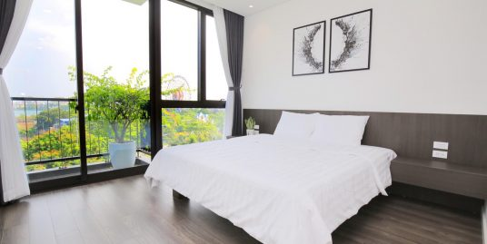 Two-Bedroom Apartment in Trinh Cong Son street, Tay Ho