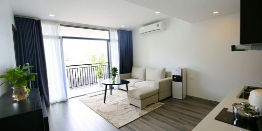 New Serviced Apartment Kim Ma street for rent