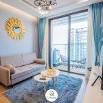 one bedroom apartment in vinhomes metropolis