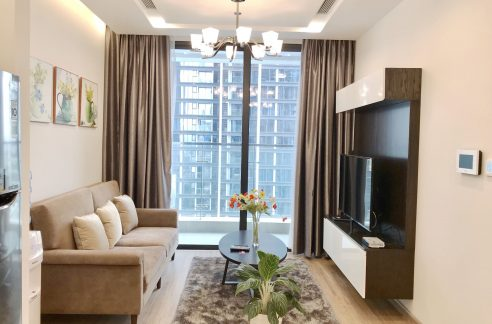 apartment in vinhomes metropolis