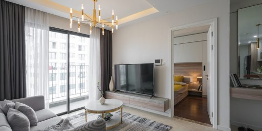 Apartment Vinhomes D'Capitale for Rent, 01 Bedrooms